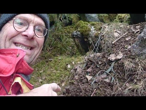 """Umirovljenik u šumi pronašao blago staro 2500 godina: """"Izgledalo je kao smeće"""""""
