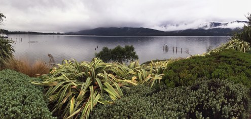 A pretty lake on the way out of Milford Sound, South Island