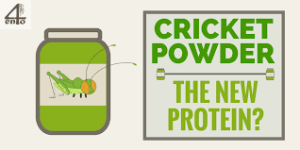 Cricket Protein – Fact or Fad?
