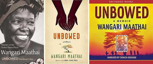 Seeds of Inspiration: Books for Children and Young Adults about Wangari  Maathai ~
