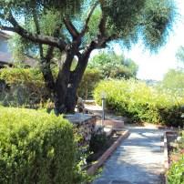 Il giardino del Villaggio Li Ligni Bianchi, vialetto di ingresso a casa Mirto