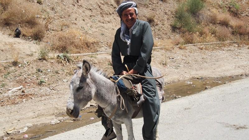 Iraq, Irak, kudistan, donkey, burro, man, hombre, vestido, dress, kurd