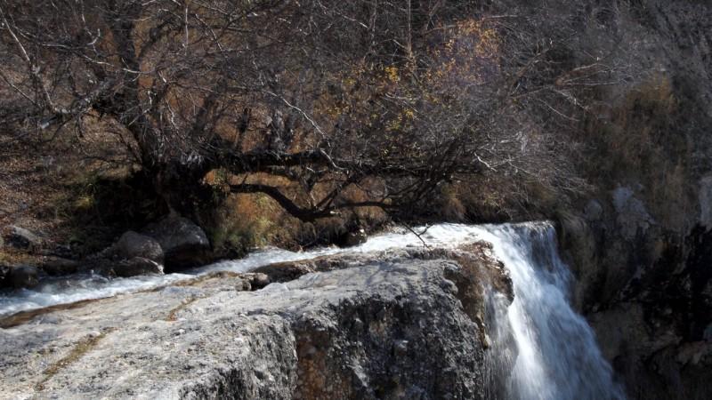 PA294657  Arslanbob, Kyrgyzstan, Kirgistán, walnut forest, bosque nogal