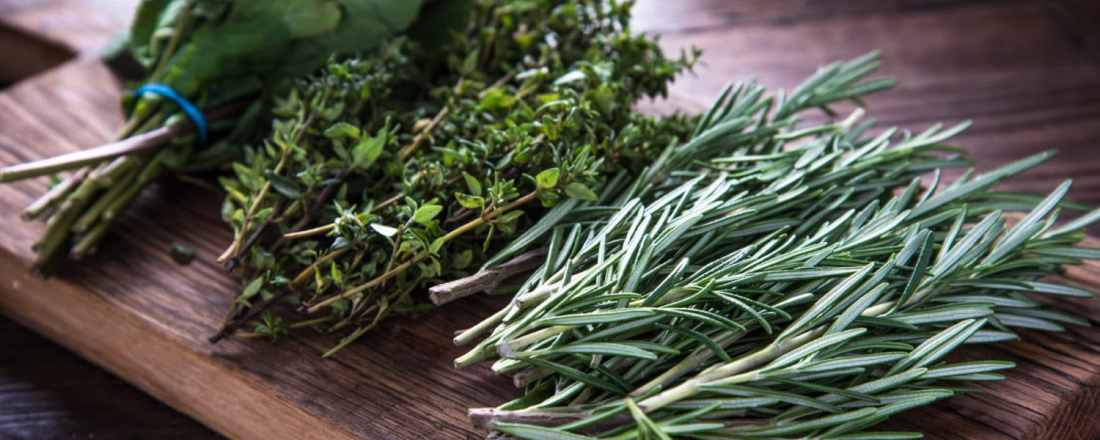 5 Amazing Herbs for Hair and Skin