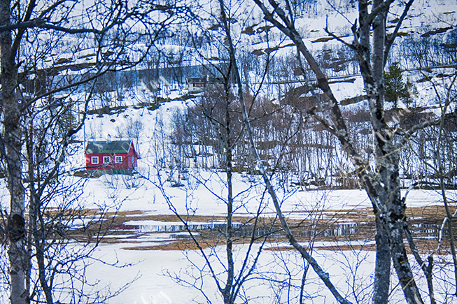 Still snow close to Myrdal Stasjon, although it was already in the middle of May. Photo © Misa Gjone