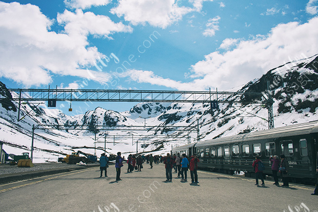 And finally, here we are, (almost) top of the world! The Myrdal Stastion, 867 MASL. Photo © Misa Gjone