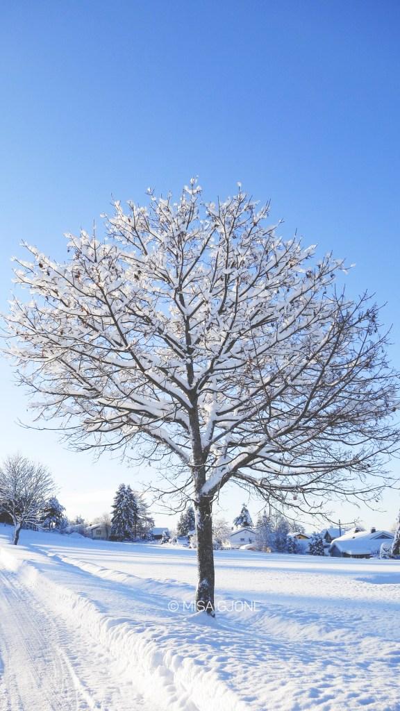 Mùa đông Na Uy 02
