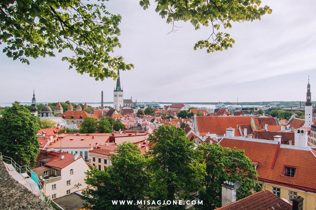 Lịch trình du lịch Phần Lan và Estonia 03