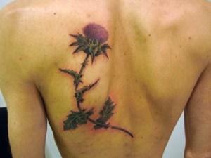 Tattoo cardo a colori