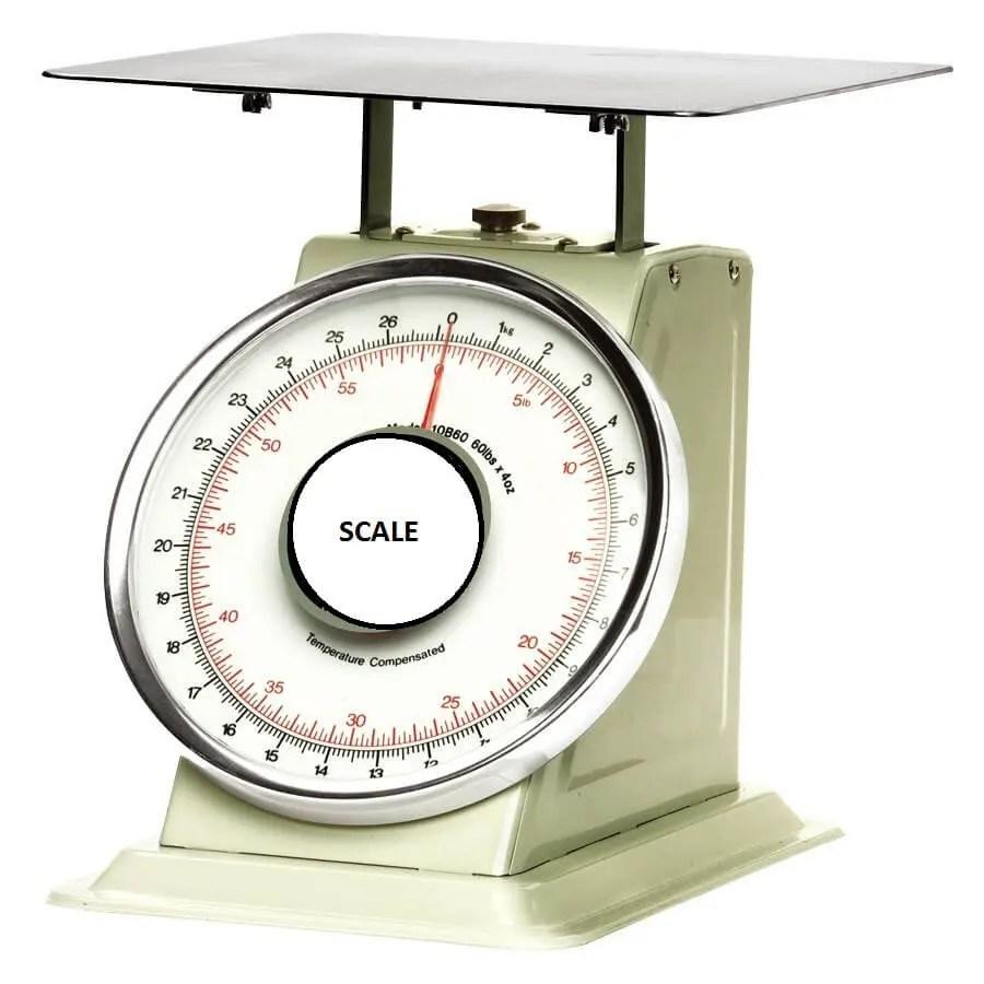 restaurant kitchen small equipment scale