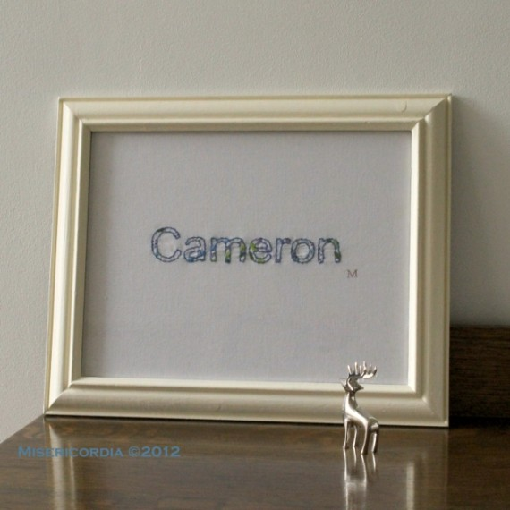 Cameron- Misericordia 2012