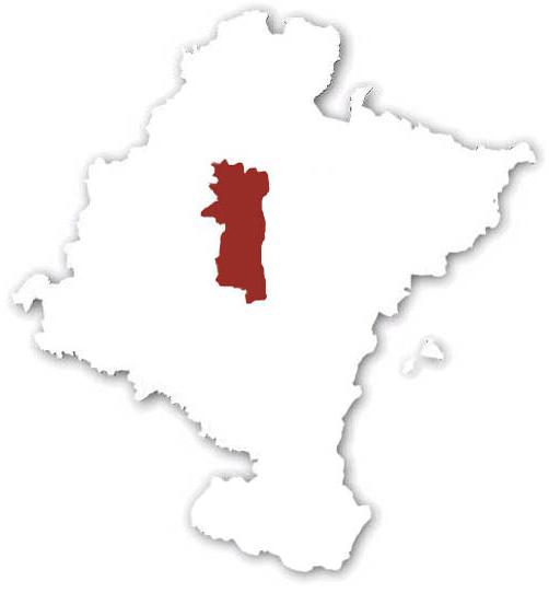 Cuenca Pamplona W