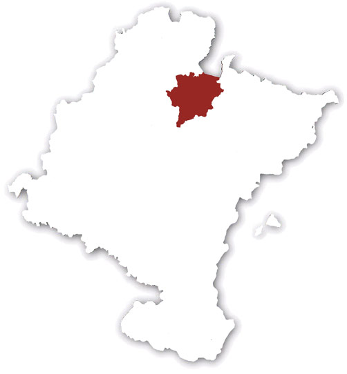 Pirineo Occidental I