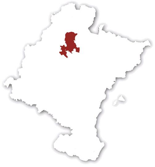 Valles del Norte y Belate
