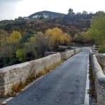 Puente de acceso a Belascoain