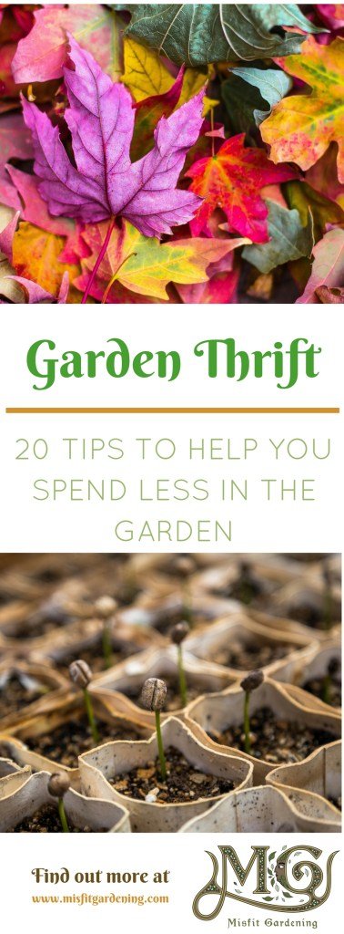 Twenty tips to help you spend less on gardening. Click to find out how or pin it and save for later