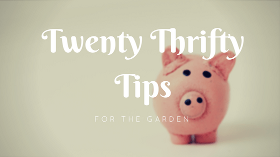 thrifty tips for the garden