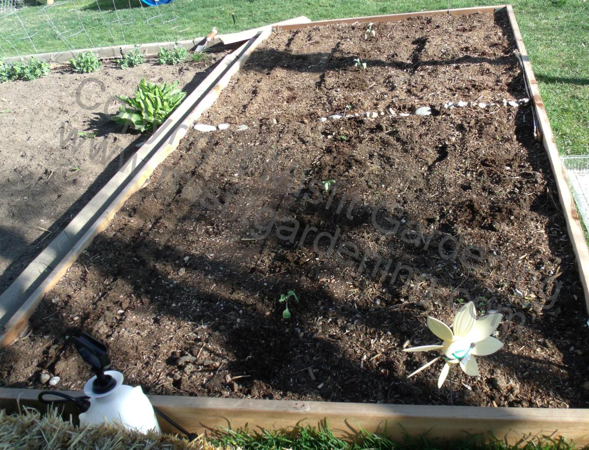 Building A Raised Bed - Step By Step