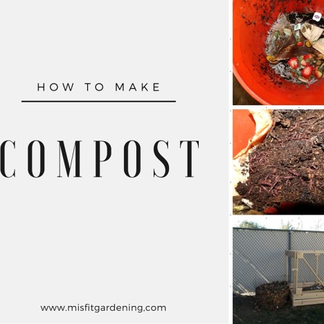 How to make compost organic gardening