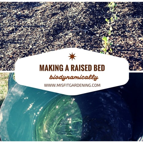 How to Create a Biodynamic Raised Bed