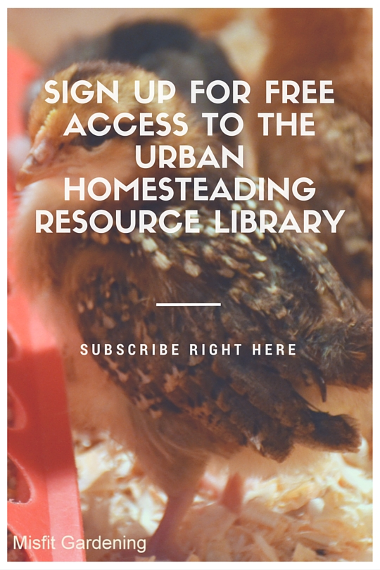 Urban Homesteading Resource Library