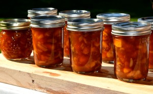 Start Urban Homesteading Today By Canning and Preserving