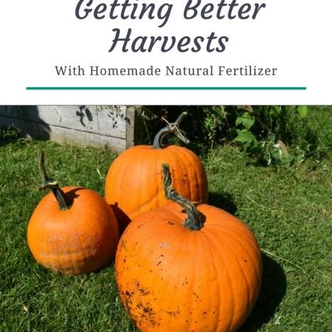how to make liquid fertilizer at home