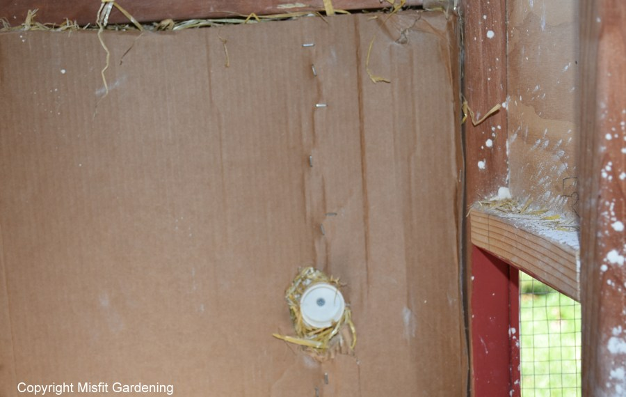 how to insulate a coop