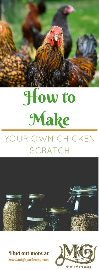 How to make chicken scratch for omega 3 rich eggs and meat. Click to find out how to start making chicken food or pin it and save for later