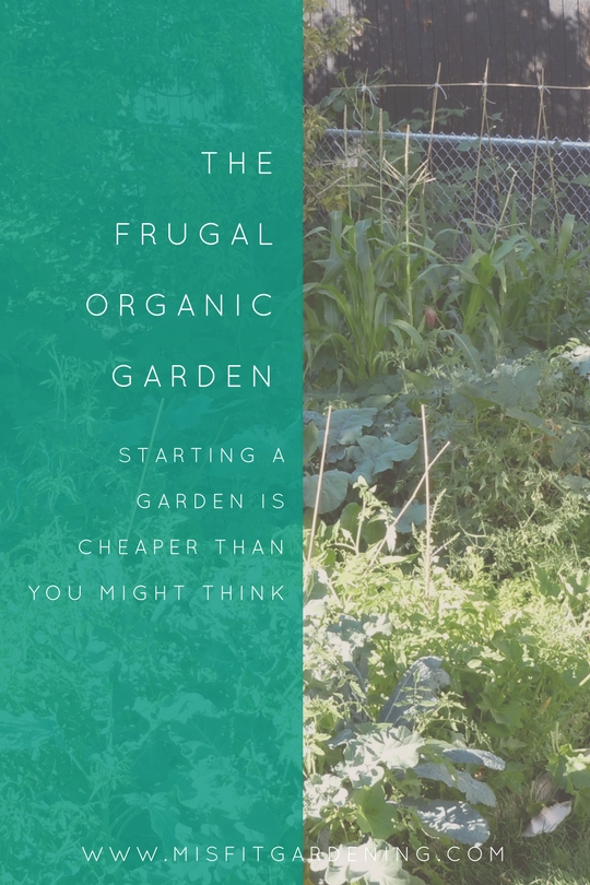 Frugal organic gardening. Find out thrifty tips to start your organic garden.. Pin it to save for later or click to find out more.