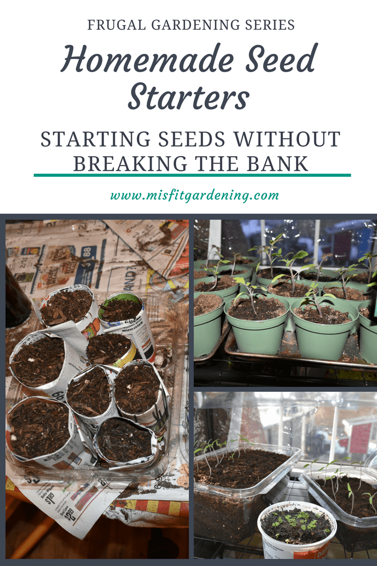 Frugal Gardening Series: Homemade Seed Starting Trays