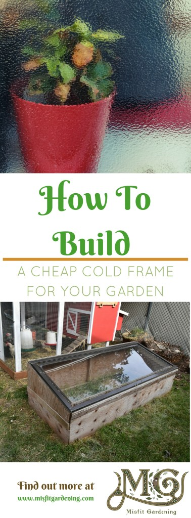 How to build a cheap cold frame that will save you money growing food each year. Click to find out more or pin it and save it for later