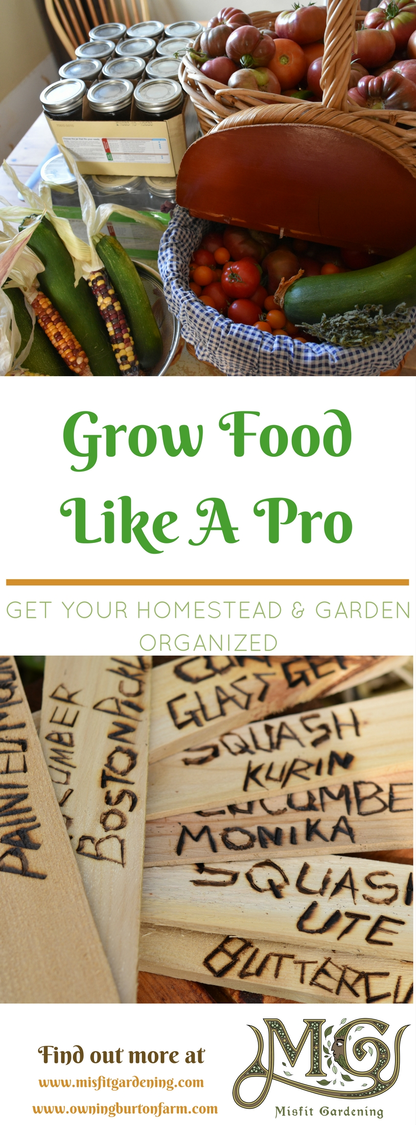 How to grow food like a pro by getting organized. Click to find out how to get organized or pin it for later