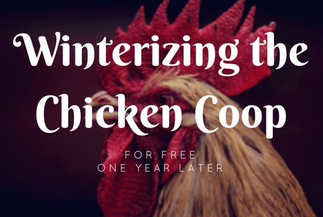 winterize a chicken coop for free