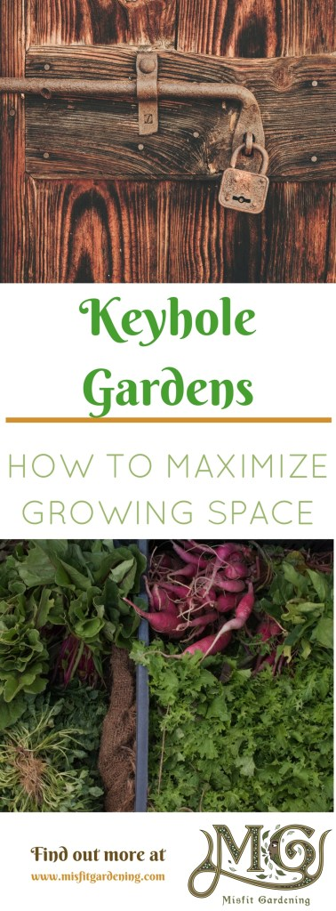 What is a keyhole garden bed and why you need them for Help design my garden