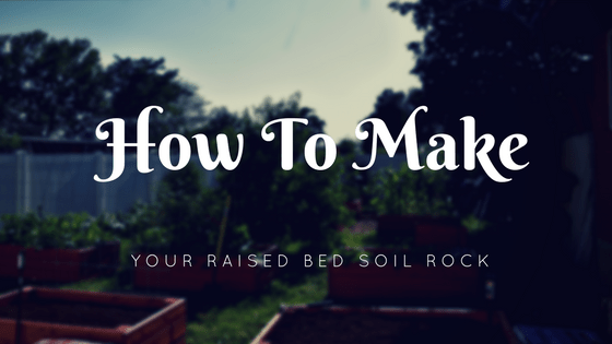 How To Make Your Raised Bed Soil Rock