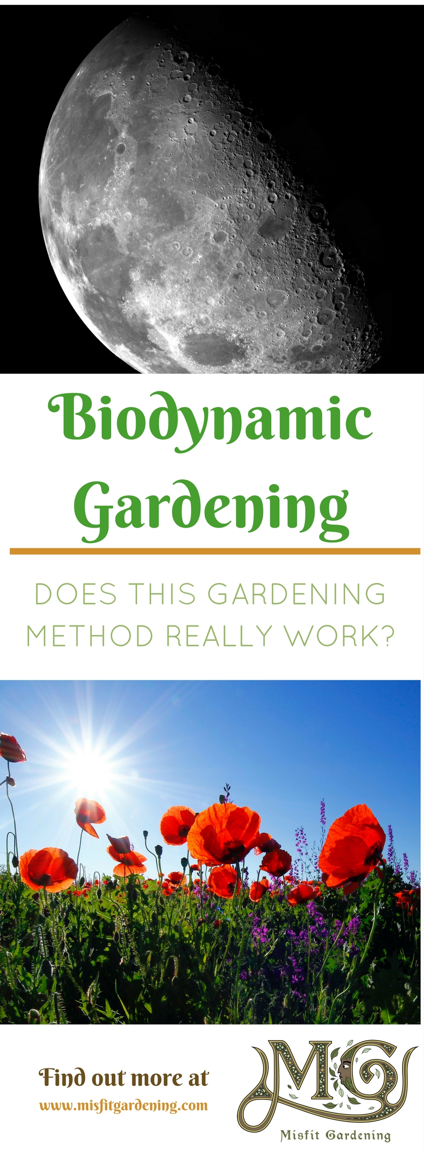 Does biodynamic gardening really work_ Click to find out how I'm going to trial biodynamics on my homestead or pin it and save for later