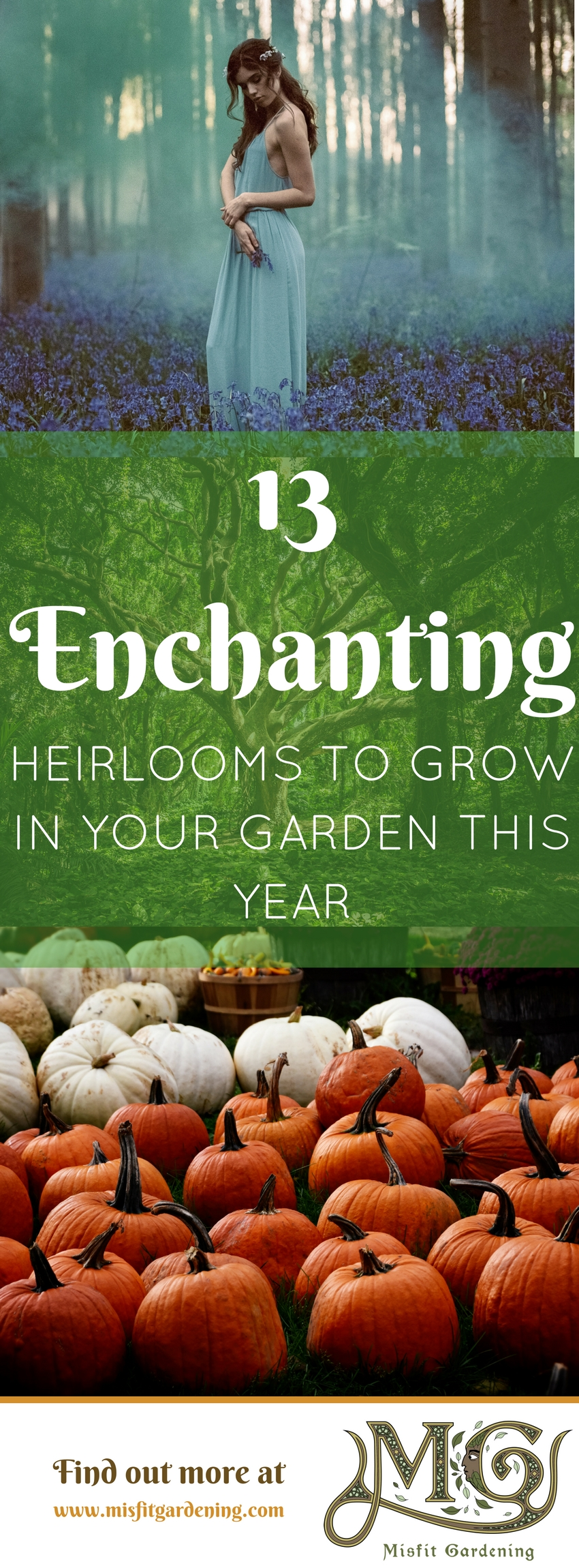 Grow some enchantment in your garden with these inspiring heirlooms. Click to find out what magical looking heirloom plants to grow garden or pin it for later