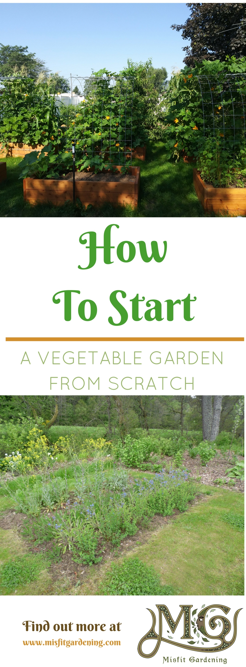 How To Start A Vegetable Garden From Scratch In 6 Easy Steps. Click To Find