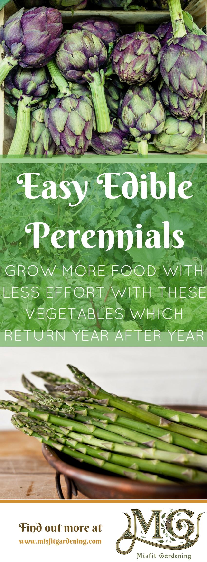 Möchten Sie mehr Nahrung mit weniger Aufwand # wachsen lassen? Mehrjähriges Gemüse eignet sich hervorragend für vielbeschäftigte Gärtner! Klicken Sie hier, um mehr zu erfahren oder es für später festzusetzen