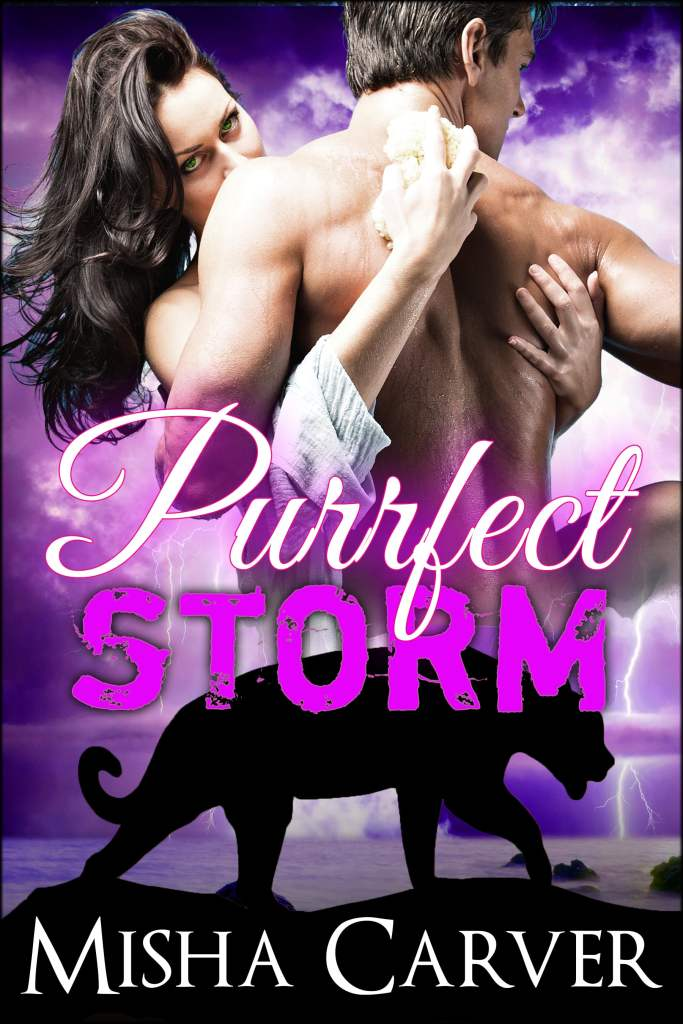 Purrfect Storm by Misha Carver
