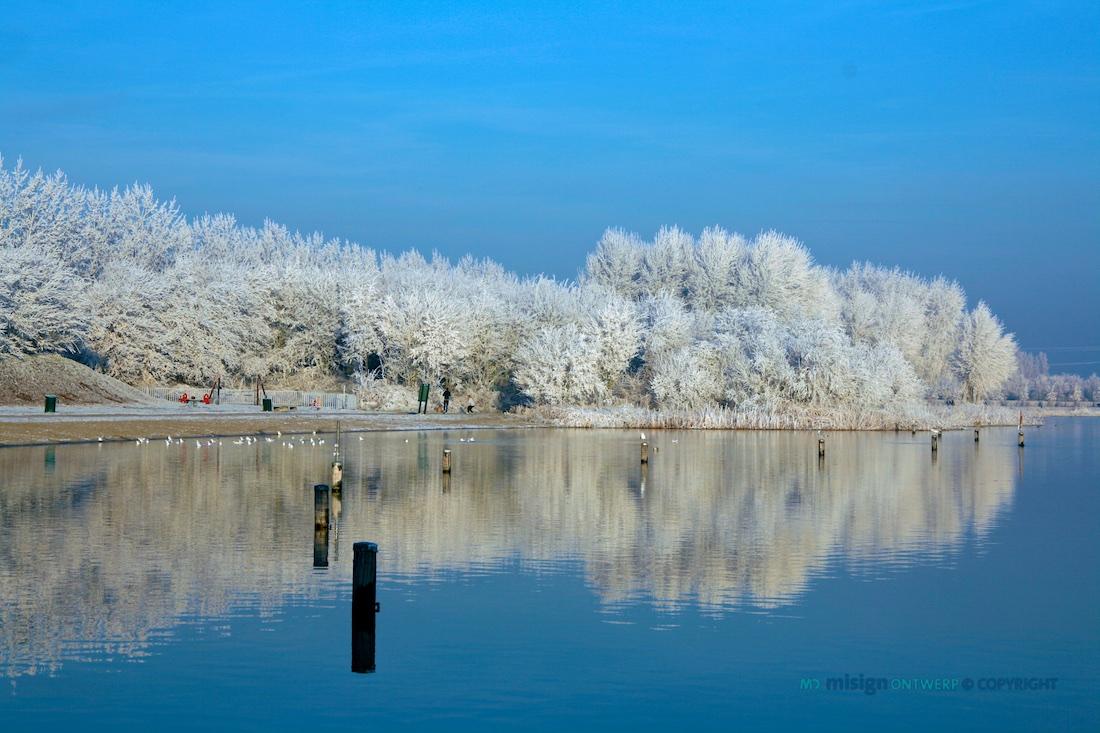 Aangevroren vorst in de bomen rond de Klinkenbergerplas in Oegstgeest. Een bijzondere dag op 22 december in 2007.