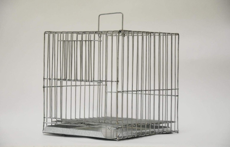 misophonia-imprisoned
