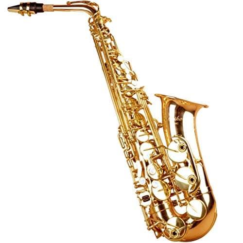 Gants Chauffants d'hiver, Saxophone Alto Laiton Laqué Or E Type Clé plate Sax Instrument à vent avec brosse de nettoyage en tissu Gants Graisse pour liège Sangle étui rembourré