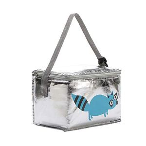 Buimin Sac à lunch femmes hommes enfants glacière adultes fourre-tout alimentaire Lunch Box avec sac isotherme simple pour enfant Portable Multi-usages Style de Voyage Trousse 6L (F)