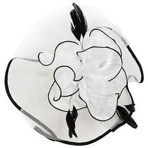 HIDOLL Femmes élégantes Fascinator Chapeau Nuptiale Plumes Cheveux Clip Accessoires Cocktail Royal Ascot (B-Blanc Noir)