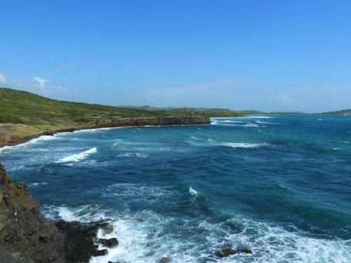 La savane des pétrifications Sainte Anne Martinique