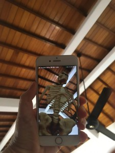 giant skeleton on phone