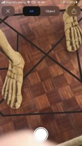 skeleton feet