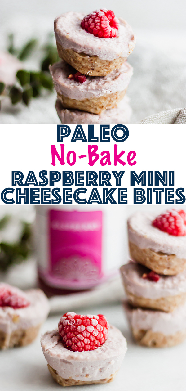 Paleo No-Bake Raspberry Mini Cheesecake Bites